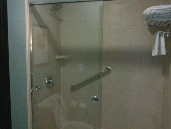 Hyatt Place West Palm Beach Downtown: nice bathroom