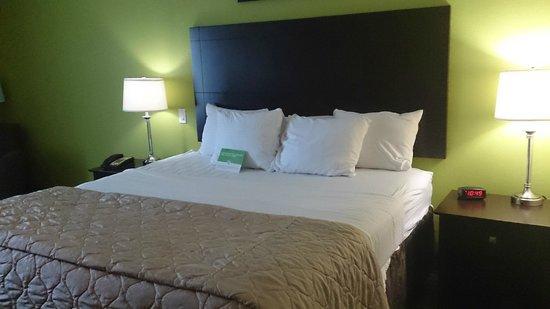 La Quinta Inn & Suites Houston Bush Intl Airport E: cama casal
