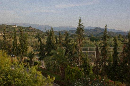 Minoa Palace Resort: Mountain view from balcony