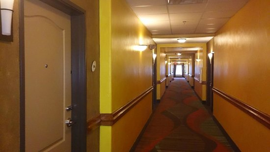 La Quinta Inn & Suites Houston Bush Intl Airport E : andar 1