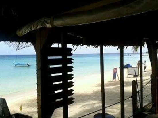 Bananarama Beach and Dive Resort: vista del restaurante