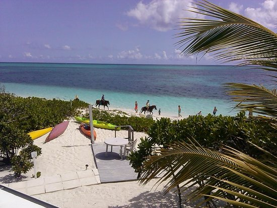 Atlantic Ocean Beach Villas: from our veranda