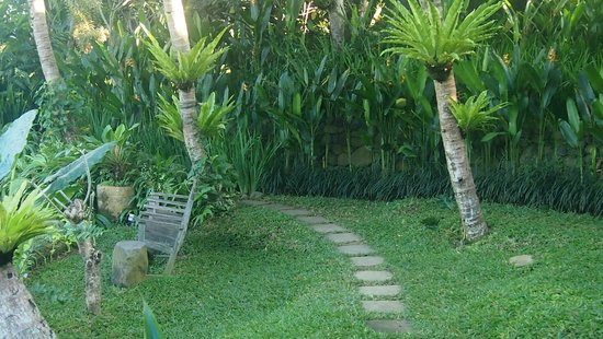 Omah Apik: Garden