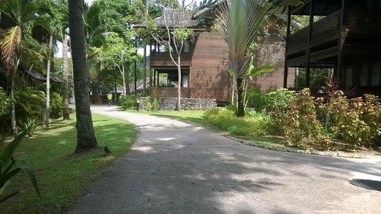 Vivanta by Taj Rebak Island, Langkawi: the cottages