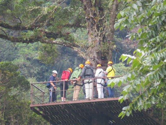 Boquete Tree Trek Mountain Resort: Zipline platform high in tree