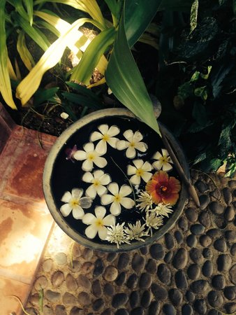 Rocky's Boutique Resort: Beautiful bowls for foot cleansing outside of your room.