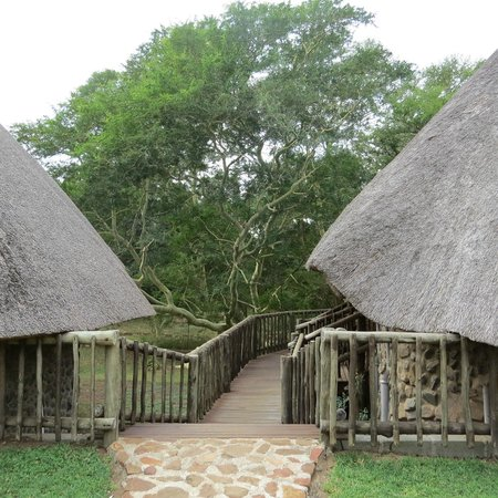 Rhino River Lodge: walkway