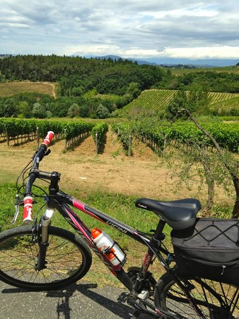 Tuscany Bike Tours: Tuscany bike tour!