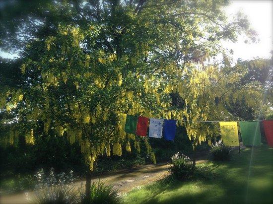 Creacon Wellness Retreat: Flags