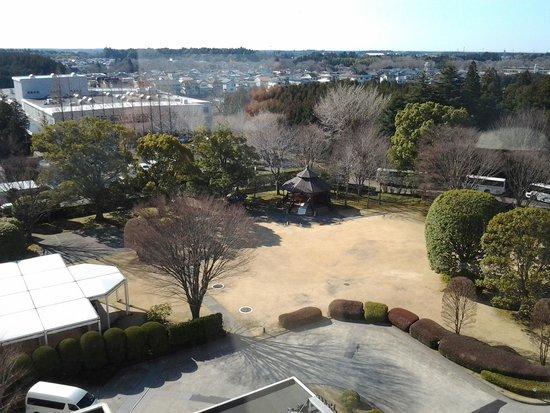 Radisson Hotel Narita: hotel garden view from room