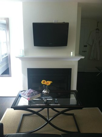 The Platinum Pebble Boutique Inn: Fireplace/tv/dining area in the room