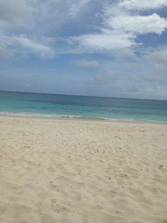 Shoal Bay : Vista da praia