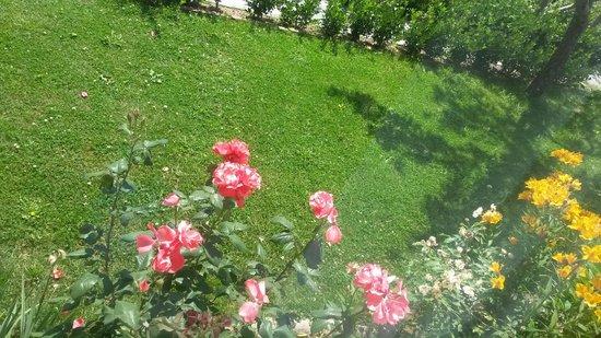 The Manali Lodge: Garden
