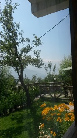 The Manali Lodge: View from room
