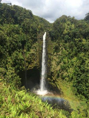 Akaka Falls Hawaii Paradise: Rainbow