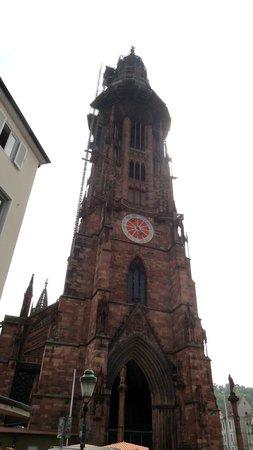 Freiburg Cathedral: Kathedraaltoren (in de steigers)