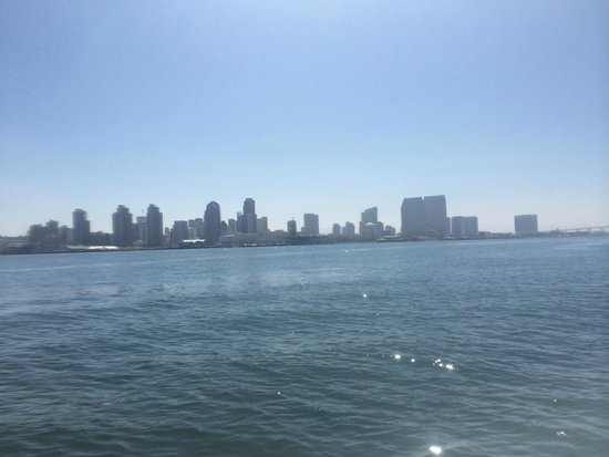 San Diego Bay Adventures: View of the city from the bay