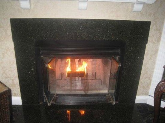 Chateau Inn & Suites: fireplace