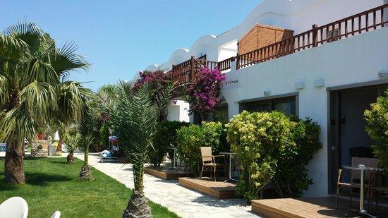 Hotel Manastir : Parte de trás do hotel vista da piscina.