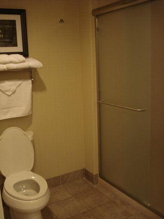 Homewood Suites Charlotte/Ayrsley: toilet & shower