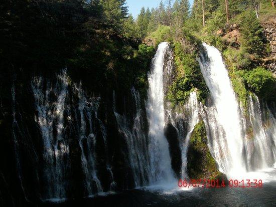 McArthur-Burney Falls Memorial State Park : The Falls