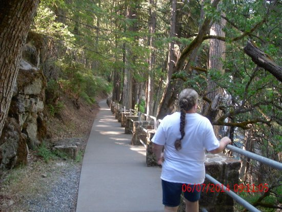 McArthur-Burney Falls Memorial State Park : heading down the trail to the Falls
