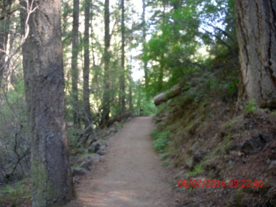 McArthur-Burney Falls Memorial State Park: trail around the Falls