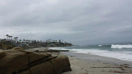 Windansea Beach : The Beach