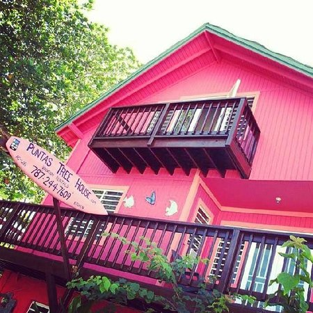 The Puntas Tree House