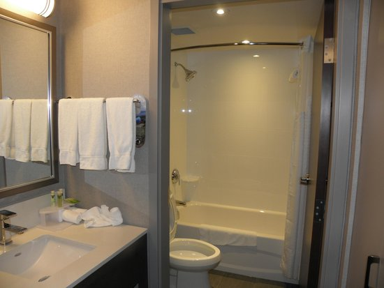 Holiday Inn Express Hotel & Suites Riverport: bathroom