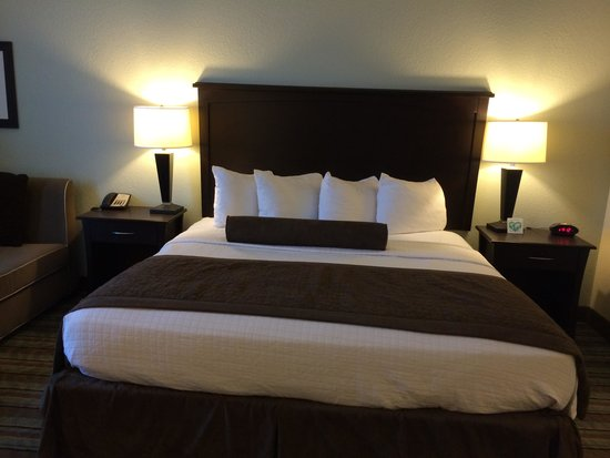 Best Western Plus Chain Of Lakes Inn & Suites: Comfortable bed