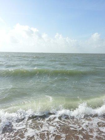 Quality Inn & Suites on the Beach: beach