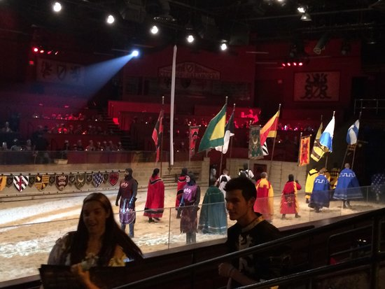 Medieval Times: In the Arena