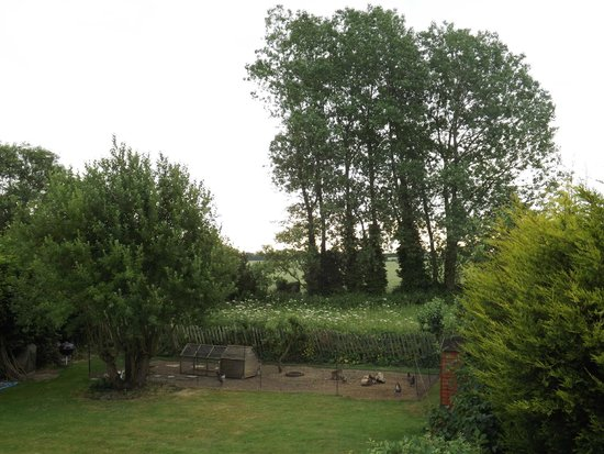 Kent House B&B: Rear garden view