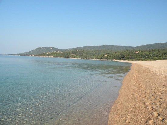 Camping de l'Esplanade : La plage