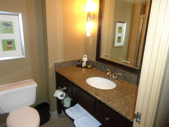 Embassy Suites by Hilton Pittsburgh - International Airport: Bathroom, also has a large walk in shower