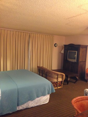 Pepper Tree Retreat: The room is big, clean and quiet. Free parking too.