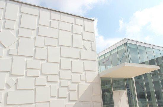 Le Consortium, oeuvre de Rutault sur la façade