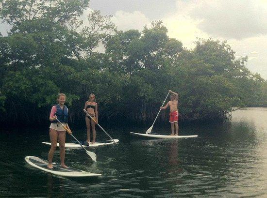 North Miami Beach, FL: Oleta River Peddle Boarding