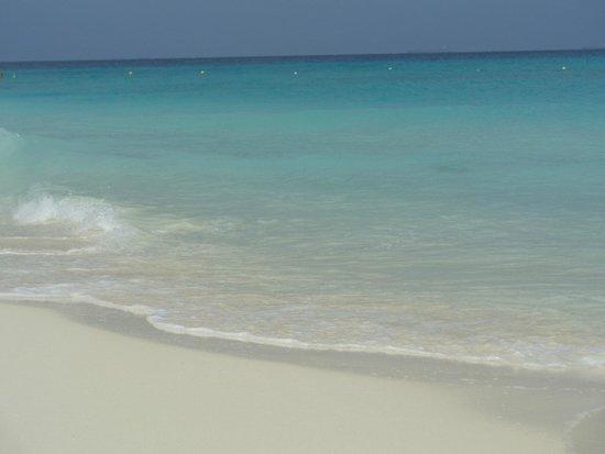 Manchebo Beach Resort & Spa: the blue sea