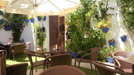 El patio azul: Courtyard/Bar