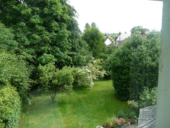 Rosebank House: View of handkerchief tree from twin room (1)
