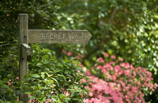 Secret Walk fingerpost sign in Abbotsbury Subtropical Gardens