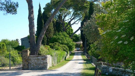 Tenuta di Ricavo: La entrada hacia el Hotel