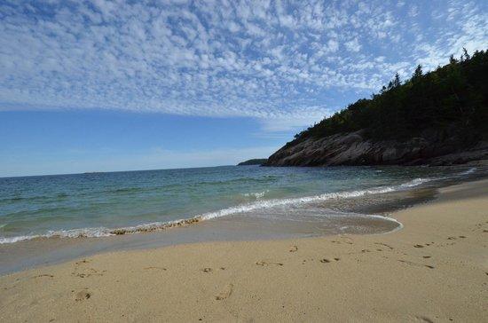 Ocean Trail: Breathtaking views