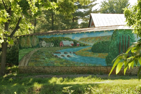 Hawksbill Greenway: One of the many murals along the way. This is only part of one.