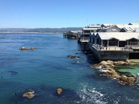 Monterey Bay Aquarium: View from one of the observation decks.
