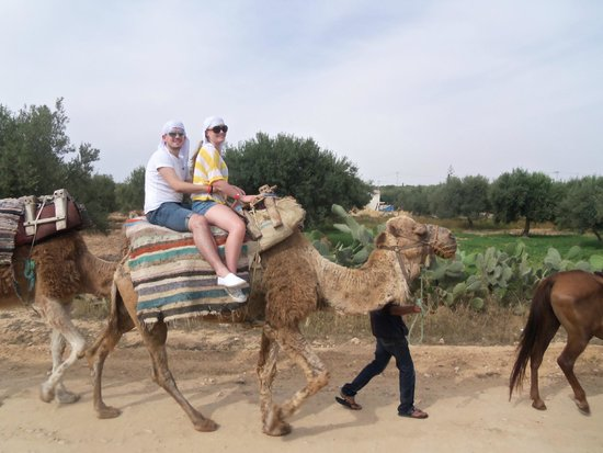 Ramada Liberty Resort Hotel: camel trip