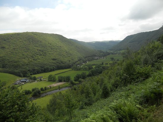 Vale of Rheidol Railway: One of the many views of the Valley