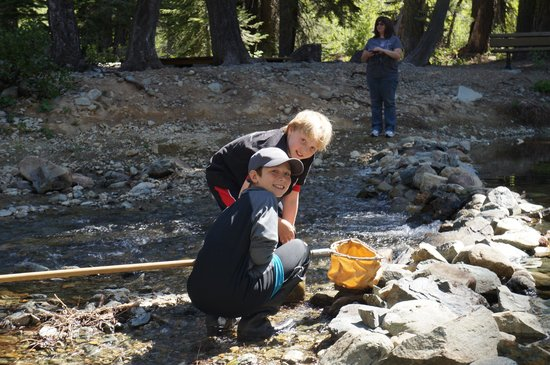 Gray Eagle Lodge: Join our kids' Biology classes!